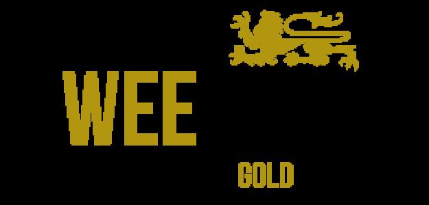 Wee 'Gers Blog
